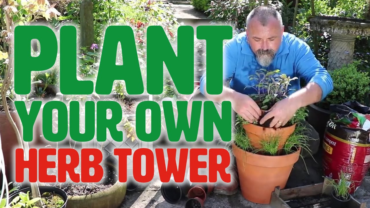 Planting Your Own Herb Tower You
