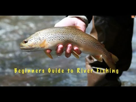 How to fly fish UK Rivers- The River Usk