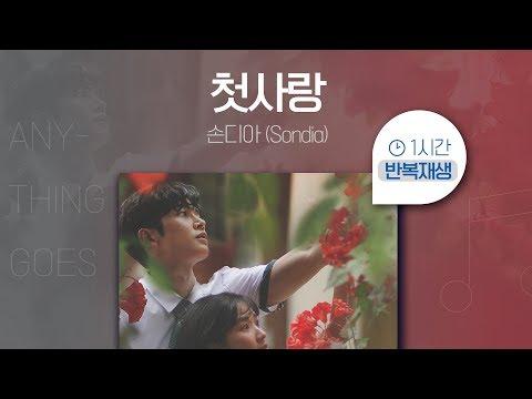 첫사랑 (어쩌다 발견한 하루 OST PART.03) - 손디아(Sondia)  | 1시간 연속 듣기