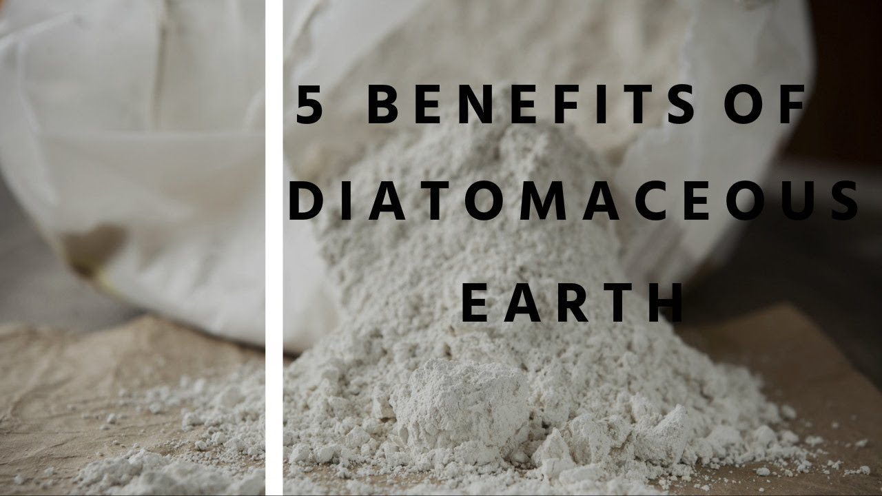 Diatomaceous earth bad for cats