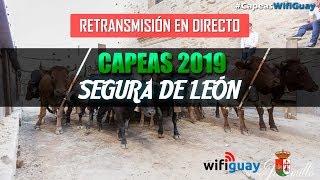 directo-capeas-segura-de-len-2019