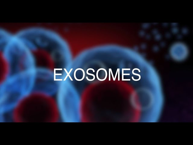 Exosomes - Hair Growth to Reverse Hair Loss - Alvi Armani - Los Angeles