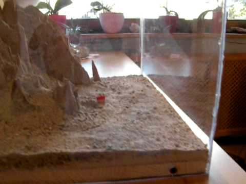 Dolomiti in 3D al Hotel Garnì Ongaro