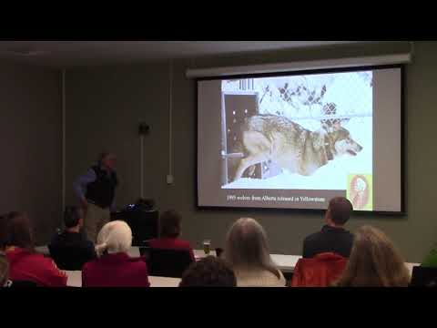 Wolves for Yellowstone: Predicting dynamics in time and space by Dr. Mark Boyce