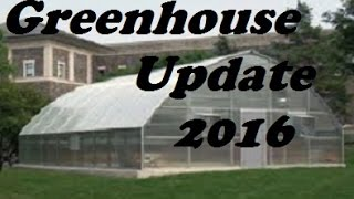 Greenhouse Growing: Poppies, Chamomile, and More