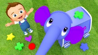 Elephant Shapes Animals Toy Set 3D - Learning Shapes & Colors for Children Kids Educational Toys
