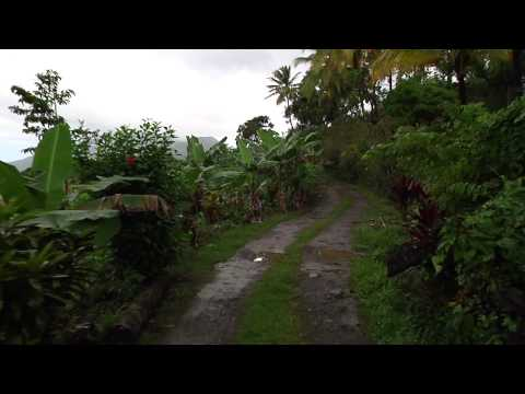 Cheap Land In Dominica FOR SALE | 3.5 Acres