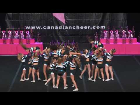 Cheer Sport Caribbean Sharks  Large Senior All-Girl 4