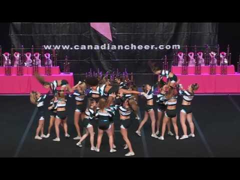 Cheer Sport Caribbean Sharks  Large Senior All-Girl 4