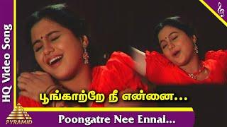 Poongatre Nee Ennai Video Song | Kizhakkum Merkkum Tamil Movie Songs | Devayani | Ilayaraja