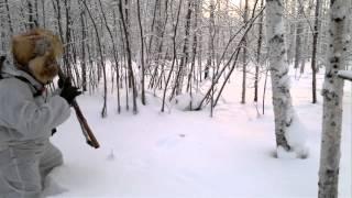 Ловля тетеревов зимой руками видео