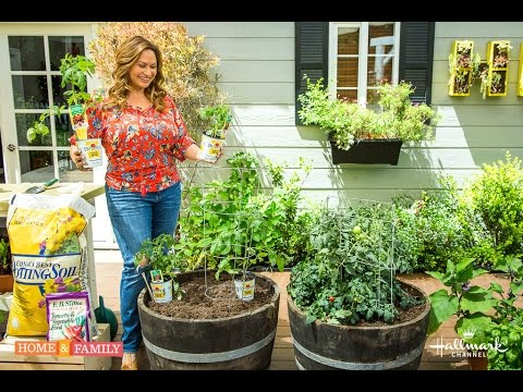 Small Space Vegetable Garden Plant Varieties Youtube
