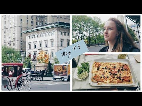 Plaza Hotel NYC~The Plaza Food Hall |Vlog 3|
