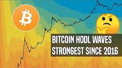 Bitcoin HODL Waves: Bitcoin Hasn't Been This Scarce Since 2016