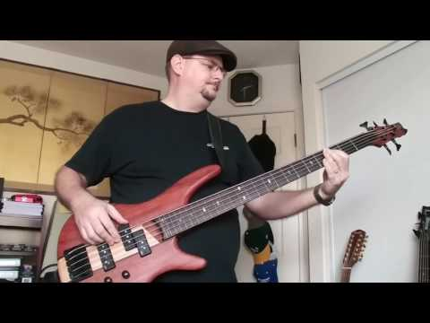 Bass cover - Wildflower by Tom Petty