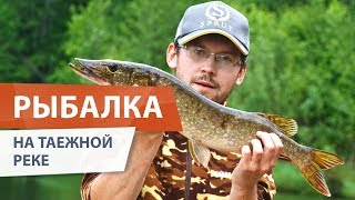 Сплав по реке КЕРЖЕНЕЦ. Рыбалка в таежной глуши