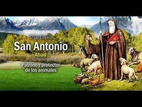 prostitutas San Antonio Abad