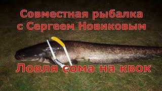 Ловля сома на квок вместе с Сергеем Новиковым.