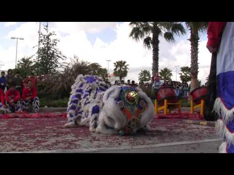 Múa Lân (Lion Dance) celebrating Tết & the Year of the Tiger at Kim Sơn. Travel Video