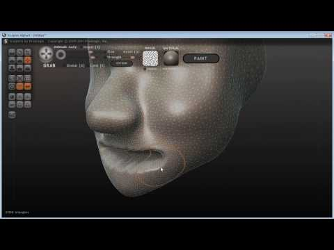 Sculptris Basics Tutorial - Female Head 1
