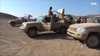 مدينة المخا وميناؤها باتا على مرمى حجر من الجيش اليمني