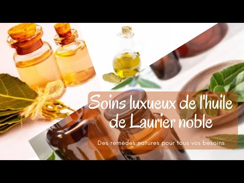 what-bay-laurel-essential-oil-can-do-for-you