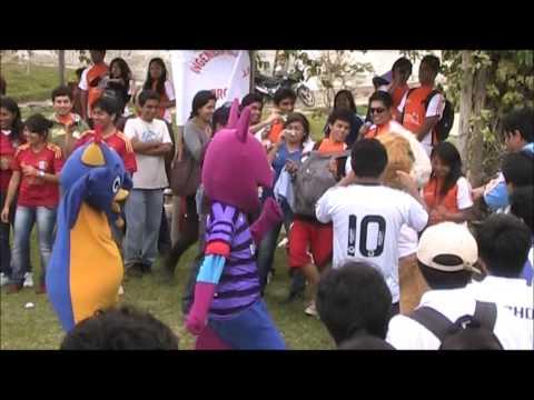 mascotas bailando a ritmo de gagnam style
