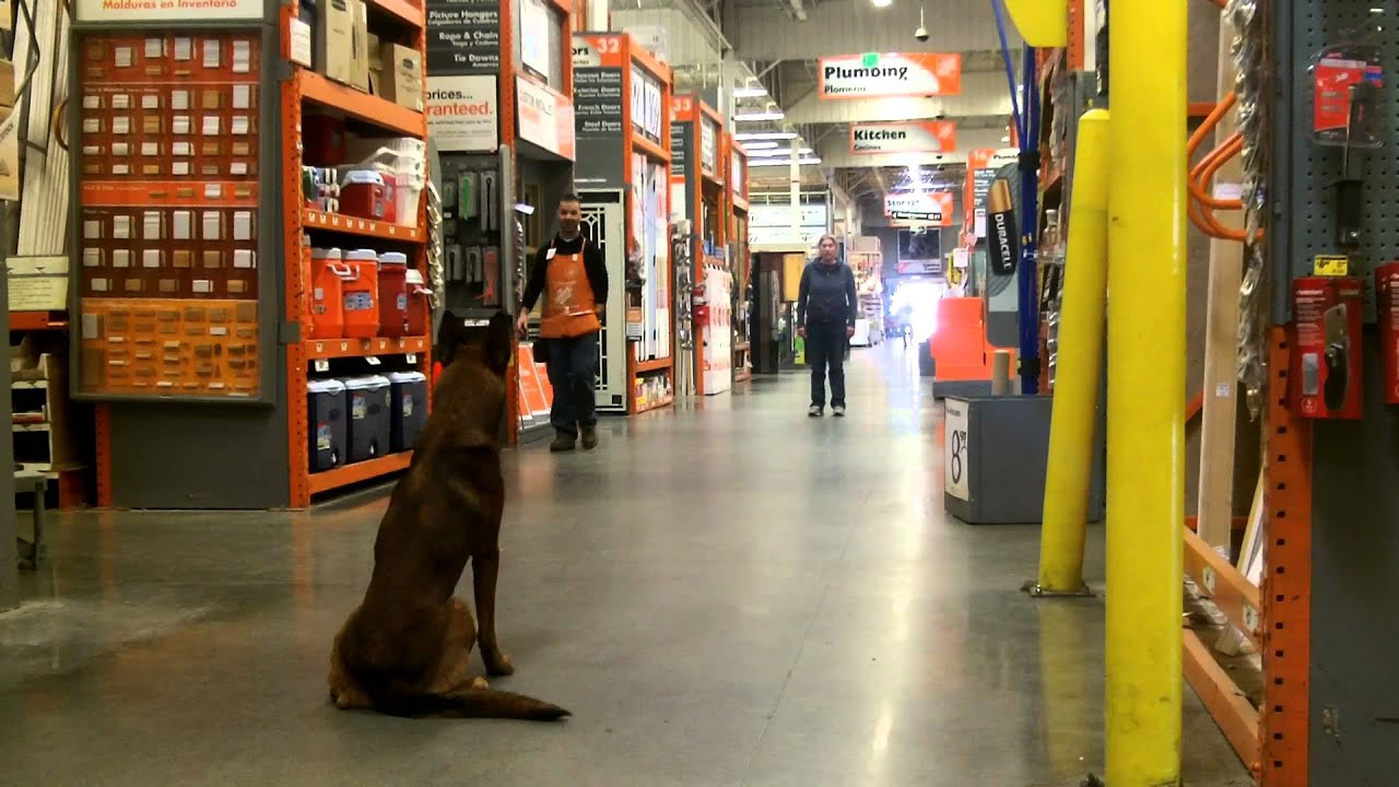 PLD trainer does position changes with Tripp inside Home Depot ...