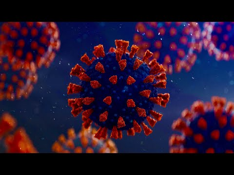 Coronavirus: US COVID-19