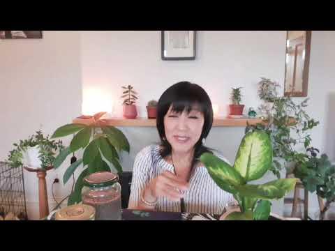 今回は食のお話しから〜の雑談   ユミンの食生活のこだわり   元ヘビースモーカーのユミンが思う タバコの話し(-。-)y-゜゜゜ アボ...