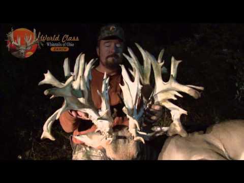insane 3 yard deer kill best deer hunting bone collector
