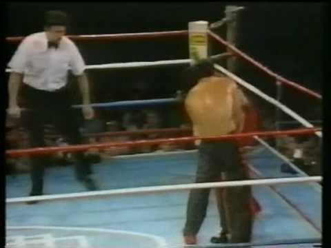 "Don ""The Dragon"" Wilson fighting highlights"