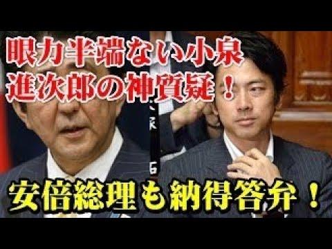 小池百合子都知事、安倍晋三総理も駆けつける!超強力バックアップで挑む!若狭勝候補への応援演説