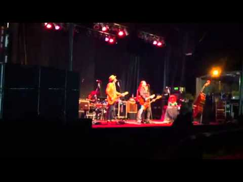 Steve Earle at Gateway Festival plays Guitar Town - YouTube