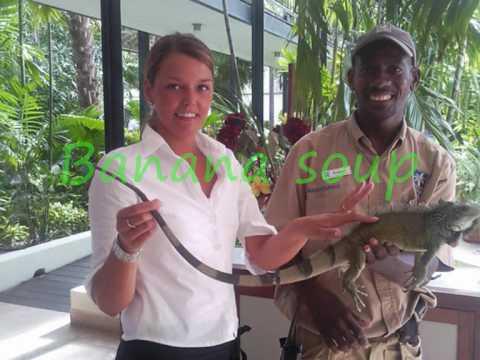 Web skills Tour guide Curacao