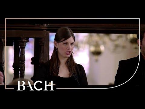 All of Bach - St Matthew Passion (BWV 244): Sind Blitze, sind Donner