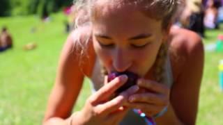 Woodstock Fruit Festival 2016 Recap #1