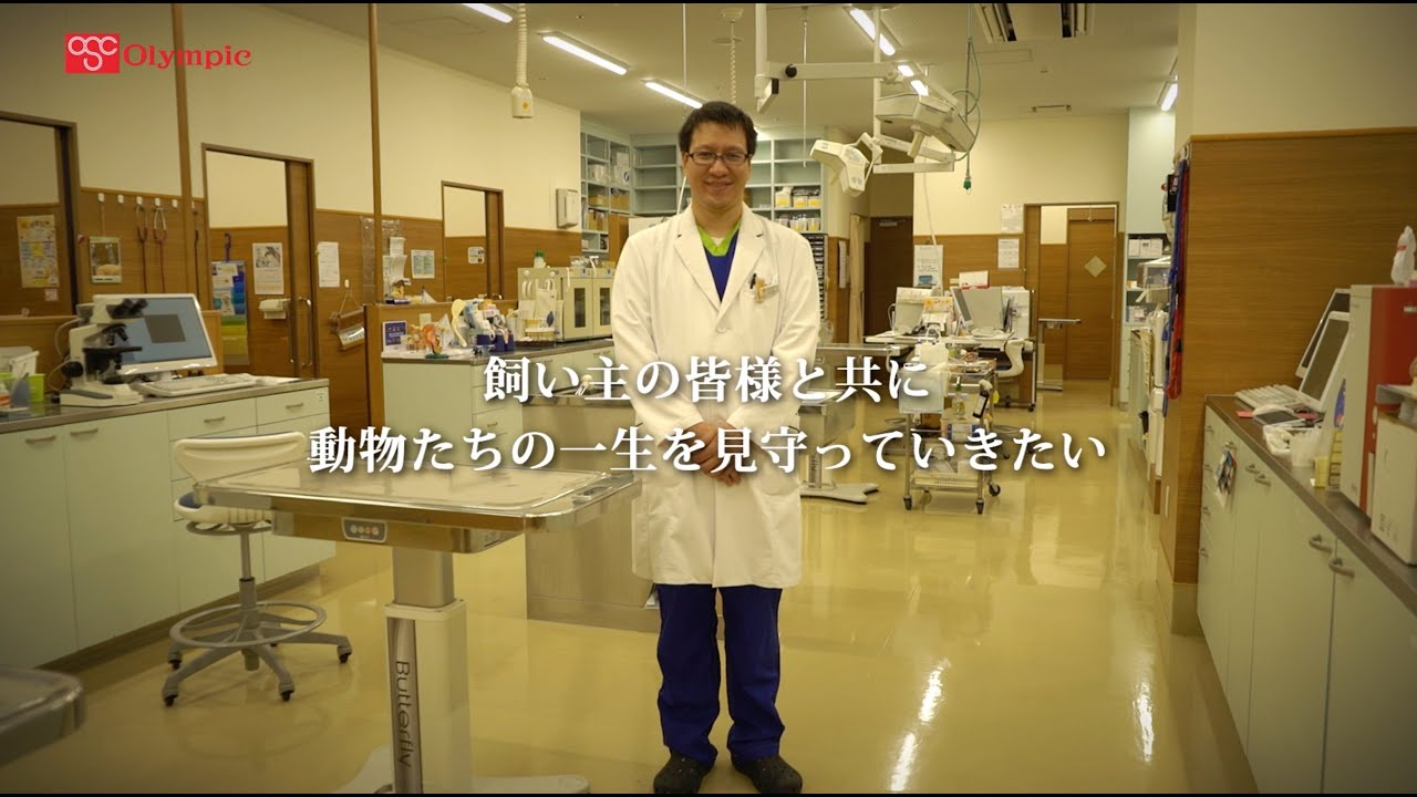 医療 動物 志村 センター 総合 坂下