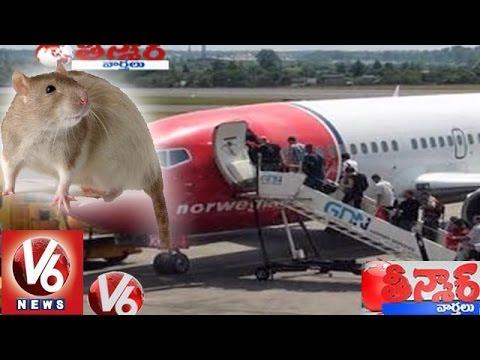 Rats grounded Air India Norway flight at New Delhi - Teenmaar News