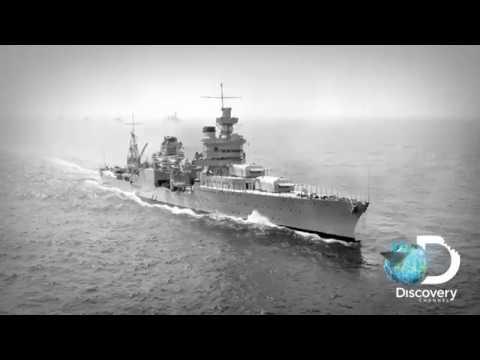 Длинокрылая акула | Cамое масштабное нападение в истории | Discovery Channel