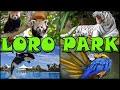 LORO PARQUE - Loro Park - Puerto de la Cruz - Tenerife 4K