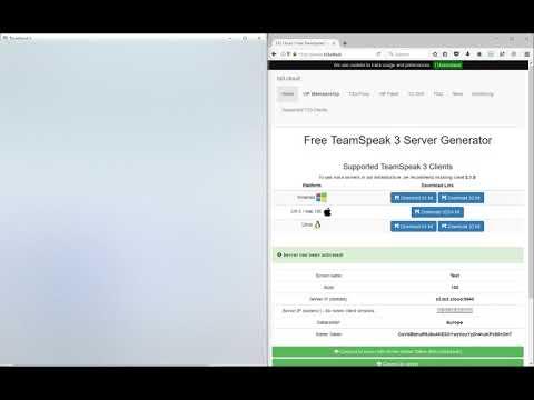 Tutorial Gratis TeamSpeak Server Erstellen Der Immer Online Ist - Minecraft server erstellen der immer online ist