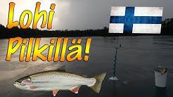 Pro Pilkki 2 | LOHI PILKILLÄ!