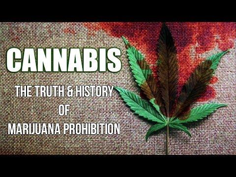 CANNABIS | The History & Truth of Marijuana Prohibition