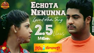 Echota Nenunna Full Lyrical Audio Song HD || Ninnu Choodalani || Jr NTR, Raveena || Jr NTR Music