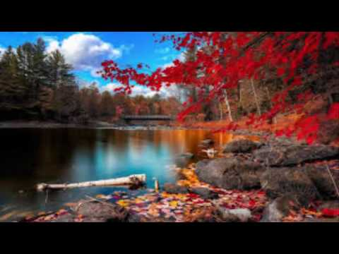 scenery landscapes