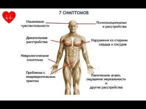 Как усилить парасимпатическую нервную систему