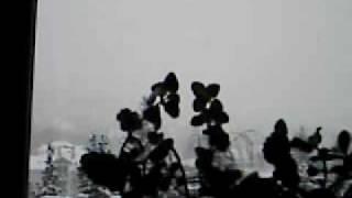 Baixar WINTER DCFC0001.AVI