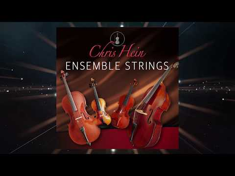 CH Ensemble Strings Overview1