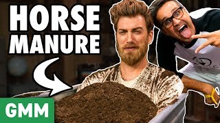 Taking A Bath In Horse Manure (Don't Lose Your Cool)